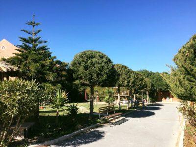 Rural House for sale Alicante garden 2